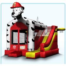 Dalmatian Jump & Slide